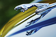 Jill Reger - Jaguar Car Hood Ornament