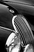 Jill Reger - Jaguar Grille black and white